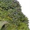 broccoli beschermt tegen kanker