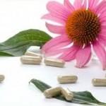 natuurgeneeskunde kruiden fytotherapie